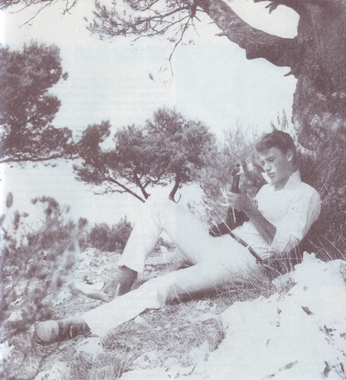Johnny Hallyday in Disco Revue